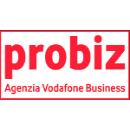aa_probiz